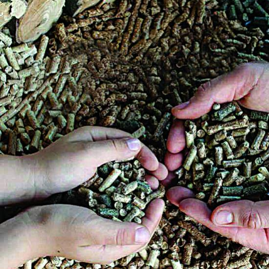 Pellet production